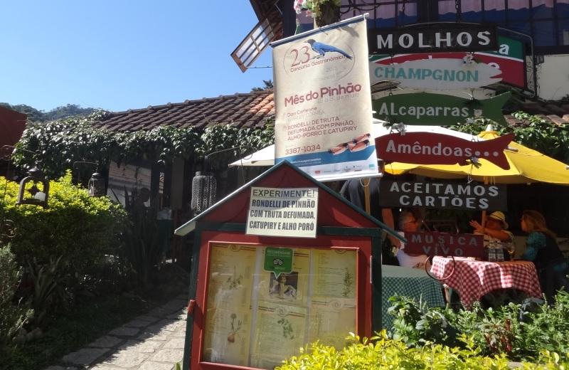 Mês do Pinhão