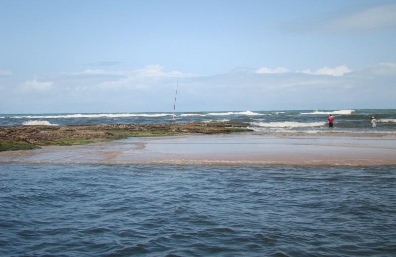 Passeio em Dunas de Marapé, no litoral sul de Alagoas