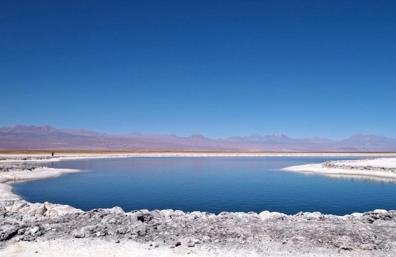 Laguna Cejar, passeio no Deserto do Atacama