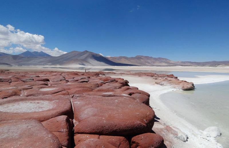 Piedras Rojas, um dos passeios no Deserto do Atacama