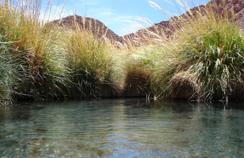Termas de Puritama, passeio no Deserto do Atacama