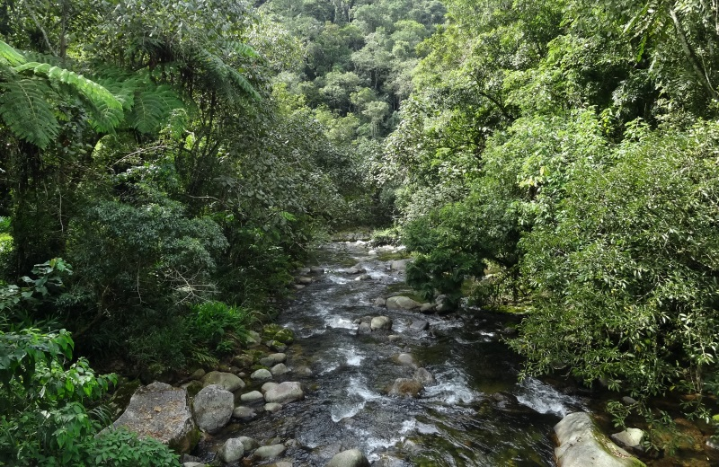 Rio Preto em Maringá, Visconde de Mauá