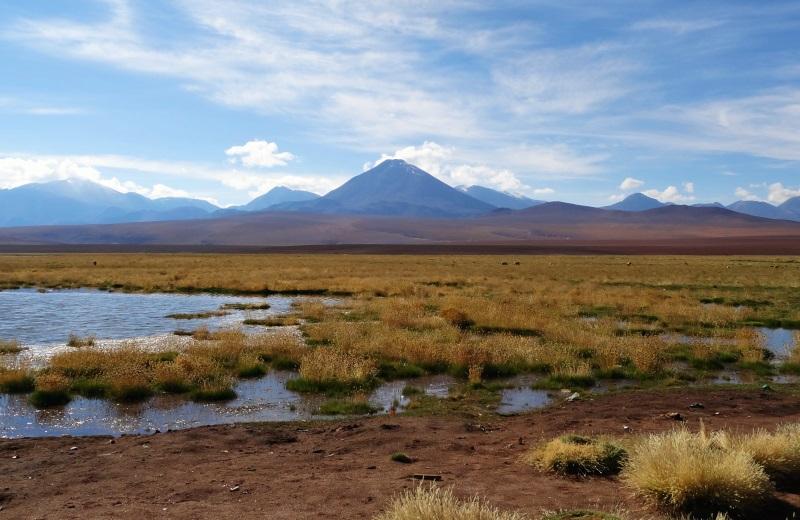 Rio Putana, Geysers el Tatio, Atacama