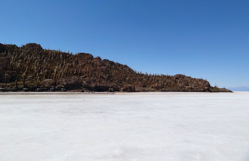Isla del Pescado no Salar de Uyuni, Bolívia
