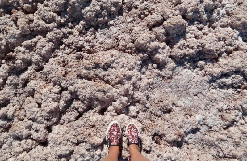 Crostas de Sal nas Lagunas Escondidas