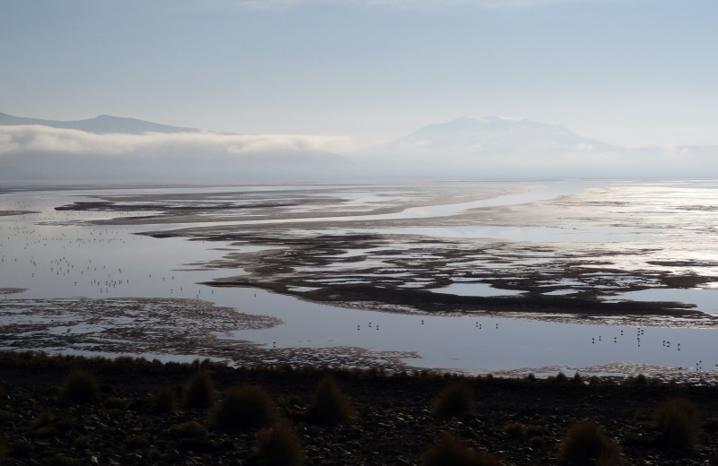 Laguna Colorada, no tour ao Salar de Uyuni, Bolívia