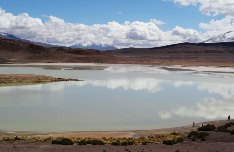 Laguna Honda, caminho ao Salar de Uyuni, Bolívia