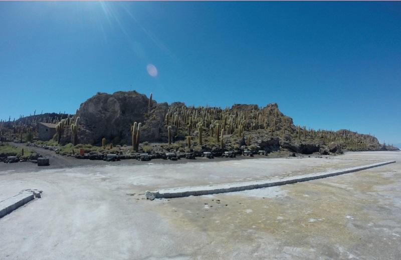 Isla Incahuasi ou Isla del Pescado no Salar de Uyuni