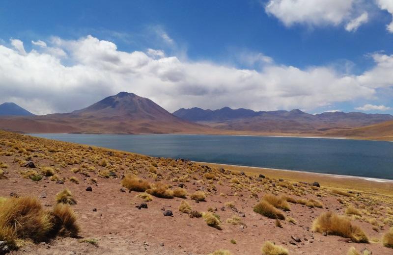 Laguna Miscanti no Deserto do Atacama