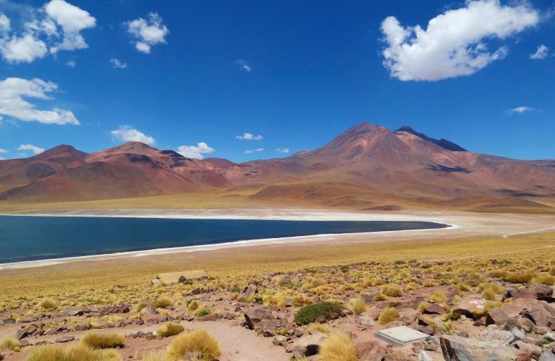 Lagunas altiplanicas, passeio no Deserto do Atacama