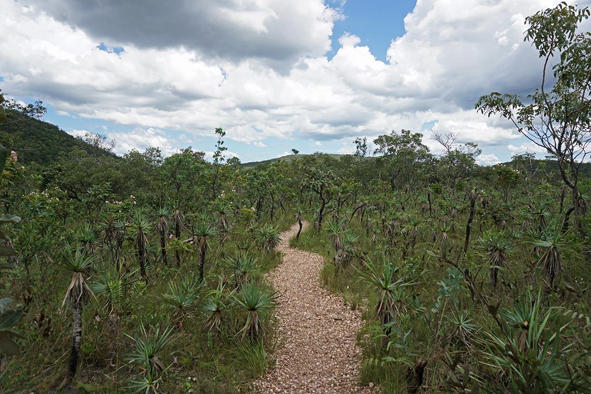 Trilha do Parque Nacional da Chapada dos Veadeiros