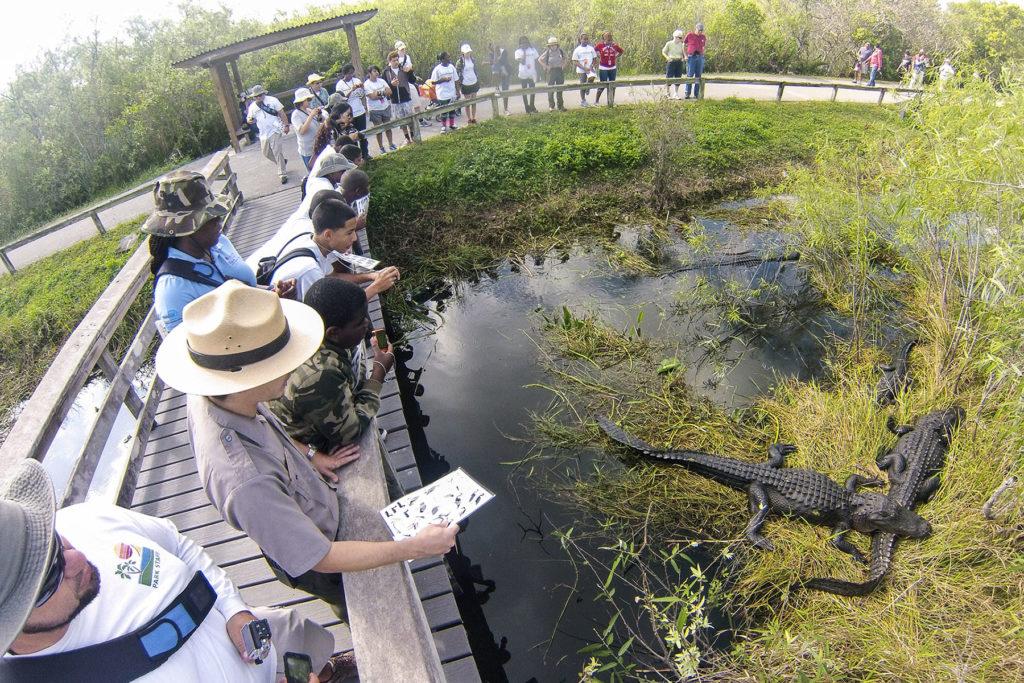 Everglades National Park em Miami